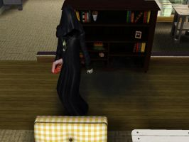 The Sims 3 - The Dead With A Book by LordVaatiXsis
