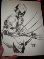 Wolverine convention sketch by kevinmellon