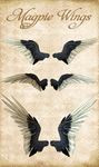 Knotties Magpie Wings by Just-A-Little-Knotty