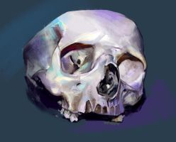 again skull by LeelCoil