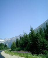 mountain road by bluewave-stock
