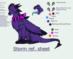 Storm ref. sheet by Pumapews