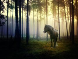 Forest Pony by RobynSmaleBeorg