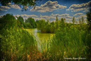 HDR-effect. by magyarilaszlo