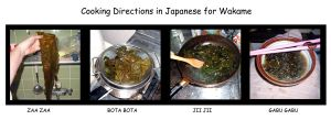 Japanese Cooking Directions by orange-peel-eater