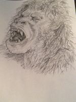 American werewolf ( Close up from horror montage) by loudsilence21