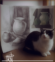 My artwork and cat by Irkis