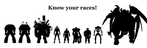 40k: Know Your Races! by Csp499