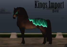 #61 Kings Import by emmy1320