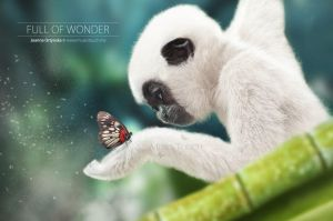 Full of Wonder by MusesTouch-digiArt