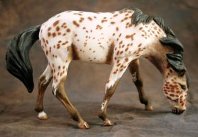 Custom Breyer Classic Mesteno by illuminatedface