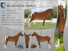 ELS Monster Energy by michelle222