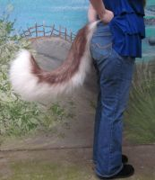 Brown Husky Tail by LilleahWest