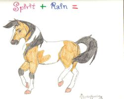 Spirit and Rain's foal by allaboutspirit