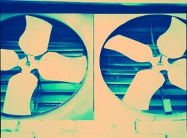 Cross Processing - 3 by Dreams-Made-Flesh