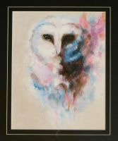 Barn Owl by girl-from-the-past