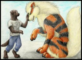Meeting Arcanine by HunterBeingHunted