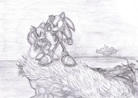 Sonic and Tails by LightningChaos2010