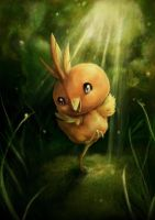 Torchic by oOIsiusOo