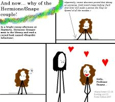 Why of the Herm-Snape couple by Fosterpython