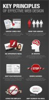 KEY PRINCIPLES OF EFFECTIVE WEBSITE DESIGN! by logodesignbizz
