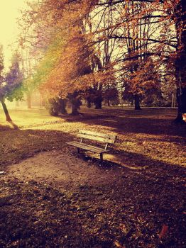Autumn bench 2 by FrantisekSpurny
