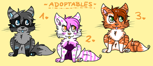 Cat ADOPTABLES // Closed! by Fayven