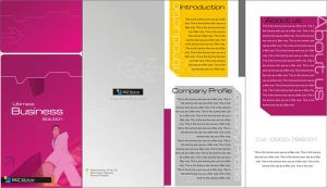 Biz Brochure by ars2007us