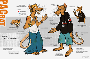 PAC Character Sheet by grungepuppy