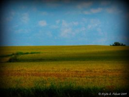 Country Field by GettysGirl441