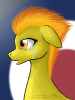 Spitfire - but...why? by Adalbertus