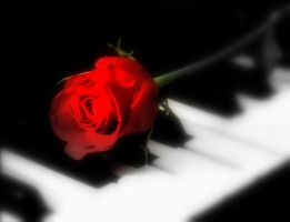 Rose of the Piano by buffyrules01