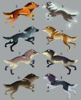 Themed Wolf Designs (Re-sale: closed) by maccarta