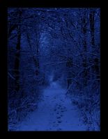 Winter Night by Wilhelmine