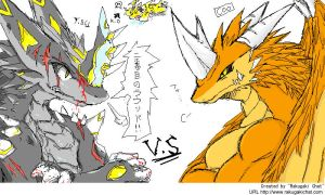 pchat - dragoon86 VS coochan by dragoon86