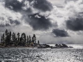 East Shore snow141101-163 by MartinGollery
