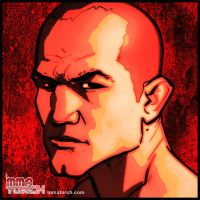 MMA Torch: Junior dos Santos by grantgoboom