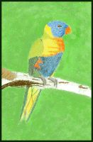 Pixel Rainbow Lorikeet by Charmed-Ravenclaw