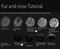 Nose and fur Tutorial by TheMysticWolf