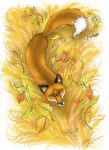 Autumn Fox by Wuhven