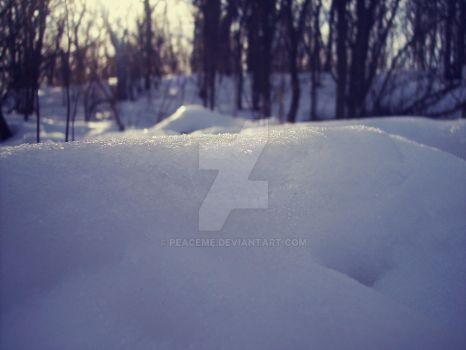 ~ snow in Poland by peaceme