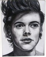 Harry Styles 2 by ZANEkun