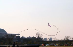Hangang Park - Flying by headraline