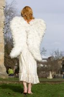 Seraphim Angel 8 by Random-Acts-Stock