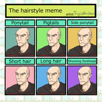 Hairstyle Meme - Picardo by RottenDeadpan
