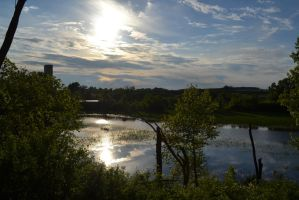 Pond near Madison, WI by Singing-Wolf-12