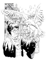 Harry Potter and Hedwig by RobertAtkins