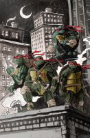 Ninja Turtles by TylerChampion