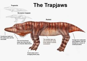 PEP: The Trapjaws by Ramul