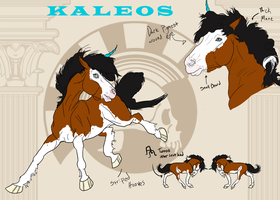 Kaleos '10 Reference by Twilight-Mustang